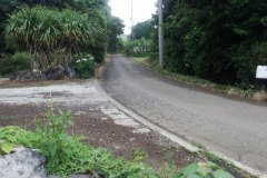 東側道路1
